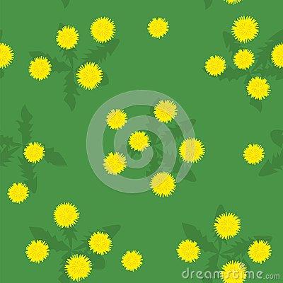 dandelions pattern